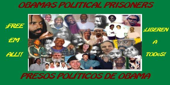 banner + Obama's political prisoners