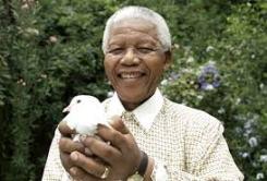 Mandela-paloma